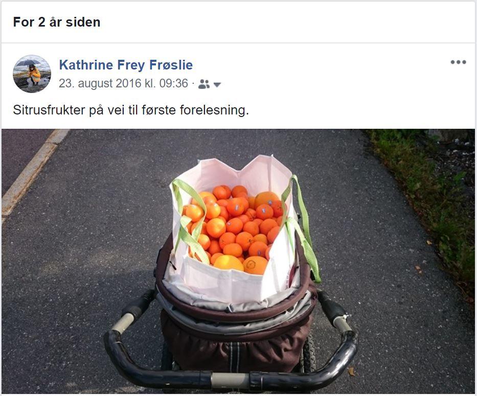 Facebook-minner